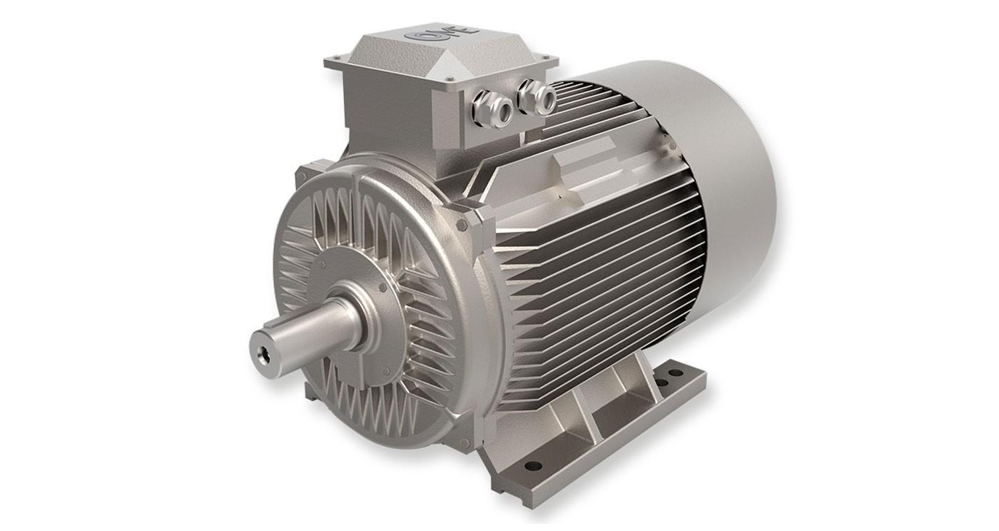Motori IE1 Standard