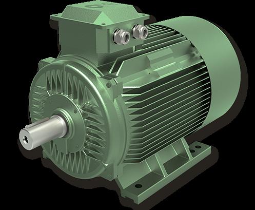 Motori IE4 Super Premium