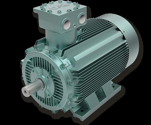 OMEX Motori Low Voltage